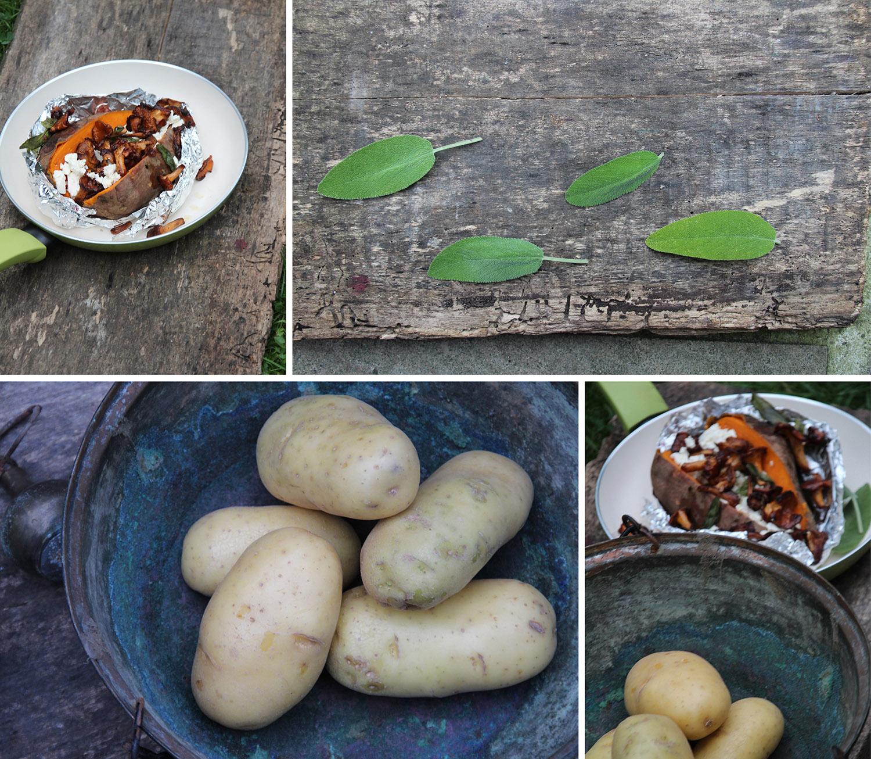 Süßkartoffel mit Feta und Pfifferlinge
