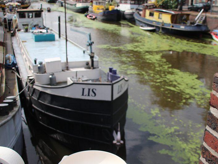 Die Grüne Pfanne in Groningen